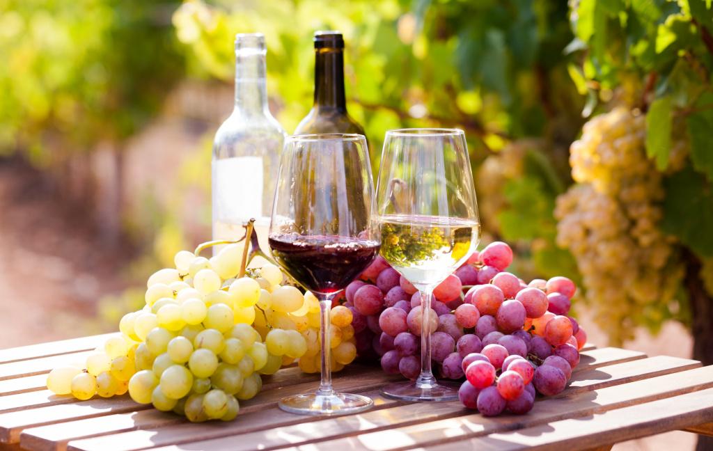 Wino - alkohol
